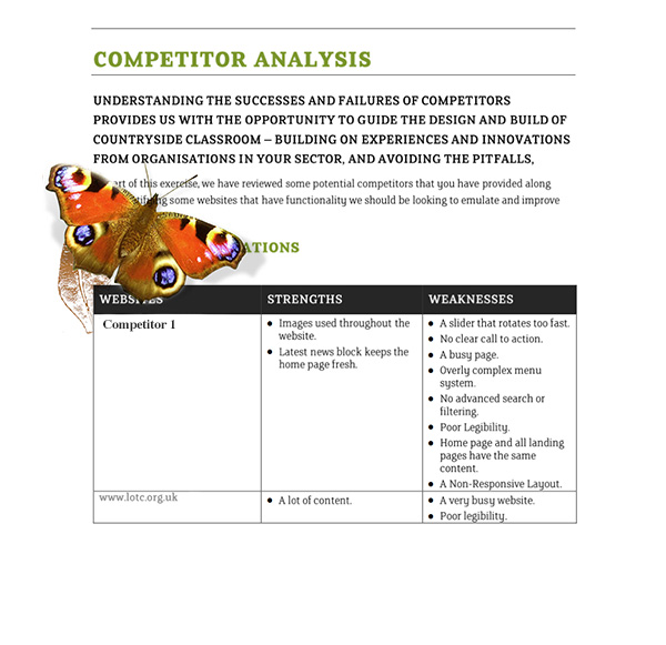 Countryside Classroom competitor website consultancy